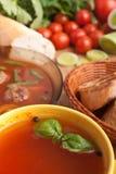ντομάτα σούπας κεφτών βασ&iota Στοκ φωτογραφία με δικαίωμα ελεύθερης χρήσης