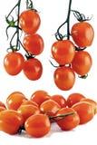ντομάτα σταφυλιών κερασιών Στοκ φωτογραφία με δικαίωμα ελεύθερης χρήσης