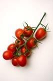 ντομάτα σταφυλιών στοκ φωτογραφία με δικαίωμα ελεύθερης χρήσης