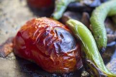 Ντομάτα σχαρών Στοκ εικόνα με δικαίωμα ελεύθερης χρήσης