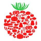 Ντομάτα των λαχανικών απεικόνιση αποθεμάτων