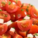 ντομάτα φρέσκων κρεμμυδιών Στοκ εικόνες με δικαίωμα ελεύθερης χρήσης
