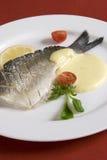 ντομάτα ψαριών sause Στοκ εικόνα με δικαίωμα ελεύθερης χρήσης