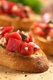 ντομάτα bruschetta Στοκ εικόνα με δικαίωμα ελεύθερης χρήσης