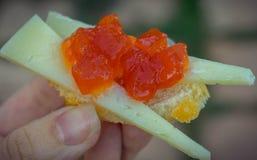 Ντομάτα Marmelade σε μια φρυγανιά με το τυρί στοκ φωτογραφίες
