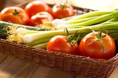 ντομάτες άνοιξη κρεμμυδιών Στοκ εικόνες με δικαίωμα ελεύθερης χρήσης