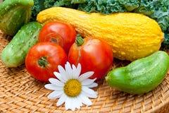 Ντομάτες, αγγούρια, μίσχοι λάχανων κολοκύνθης και κατσαρού λάχανου από το τοπικό γ στοκ εικόνα