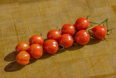 Ντομάτες αμπέλων στο ξύλινο υπόβαθρο στοκ εικόνα με δικαίωμα ελεύθερης χρήσης