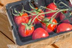 Ντομάτες αμπέλων στο πλαστικό που συσκευάζει 2 στοκ φωτογραφίες με δικαίωμα ελεύθερης χρήσης