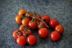 Ντομάτες αμπέλων στοκ φωτογραφία