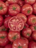 ντομάτες ανασκόπησης Στοκ Φωτογραφία