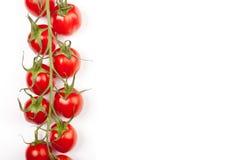 ντομάτες γραμμών κερασιών Στοκ φωτογραφίες με δικαίωμα ελεύθερης χρήσης