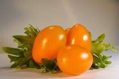 ντομάτες δαμάσκηνων Στοκ Φωτογραφίες