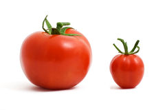 ντομάτες δύο Στοκ Φωτογραφία