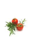 ντομάτες θυμαριού κερασ Στοκ εικόνα με δικαίωμα ελεύθερης χρήσης