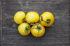 ντομάτες κίτρινες Στοκ Φωτογραφία