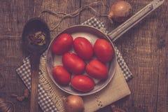 Ντομάτες και κρεμμύδια Στοκ εικόνα με δικαίωμα ελεύθερης χρήσης