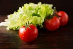 Ντομάτες και μαρούλι στοκ εικόνα
