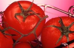 ντομάτες καλαθιών στοκ φωτογραφία