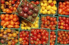 ντομάτες κερασιών καλαθ& Στοκ Φωτογραφία