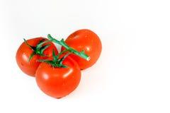 Ντομάτες κερασιών - που απομονώνονται Στοκ φωτογραφία με δικαίωμα ελεύθερης χρήσης