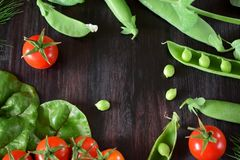 Ντομάτες κερασιών, πράσινα μπιζέλια και chard φύλλα στο σκοτεινό κλίμα Στοκ εικόνα με δικαίωμα ελεύθερης χρήσης