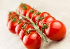 Ντομάτες κερασιών στην άμπελο Στοκ Φωτογραφίες