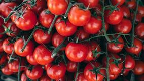 Ντομάτες κερασιών στην αγορά αγροτών στο Παρίσι Εκλεκτική εστίαση και ρηχό βάθος του τομέα Στοκ Εικόνες