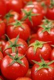 Ντομάτες κοκτέιλ Στοκ Φωτογραφία