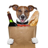 Ντομάτες κρασιού σκυλιών τσαντών παντοπωλείων στοκ εικόνες