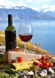 Ντομάτες κόκκινου κρασιού, τυριών, ψωμιού και κερασιών Στοκ Εικόνα