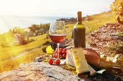 Ντομάτες κόκκινου κρασιού, τυριών, ψωμιού και κερασιών Στοκ εικόνες με δικαίωμα ελεύθερης χρήσης