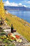 Ντομάτες κόκκινου κρασιού, τυριών, ψωμιού και κερασιών. Lavaux, Ελβετία Στοκ φωτογραφία με δικαίωμα ελεύθερης χρήσης