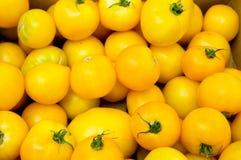 ντομάτες λεμονιών αγοριώ&nu Στοκ Εικόνες