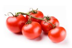 ντομάτες μίσχων Στοκ φωτογραφίες με δικαίωμα ελεύθερης χρήσης