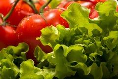 ντομάτες μαρουλιού Στοκ εικόνες με δικαίωμα ελεύθερης χρήσης