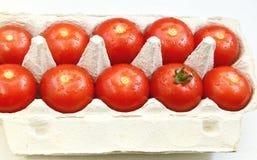 Ντομάτες με τα αυγά επιτροπής του εγγράφου Στοκ Εικόνα