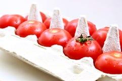 Ντομάτες με τα αυγά επιτροπής του εγγράφου Στοκ Φωτογραφία