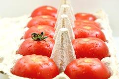 Ντομάτες με τα αυγά επιτροπής του εγγράφου Στοκ εικόνες με δικαίωμα ελεύθερης χρήσης
