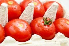 Ντομάτες με τα αυγά επιτροπής του εγγράφου Στοκ Εικόνες