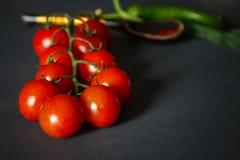 Ντομάτες με τα πράσινα pappers στοκ φωτογραφία