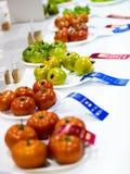 Ντομάτες με τις κορδέλλες σε έναν γεωργικό ανταγωνισμό Στοκ Φωτογραφία