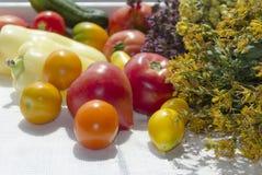 Ντομάτες οικογενειακών κειμηλίων, πιπέρι, cucmber, οργανικά λαχανικά Στοκ φωτογραφία με δικαίωμα ελεύθερης χρήσης