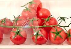 ντομάτες πακέτων Στοκ Εικόνα