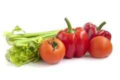 Ντομάτες. πιπέρι και σέλινο Στοκ Εικόνες