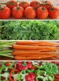 ντομάτες πιπεριών κατσαρού λάχανου καρότων Στοκ Φωτογραφία