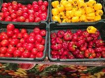 ντομάτες πιπεριών κουδο&up Στοκ Φωτογραφίες