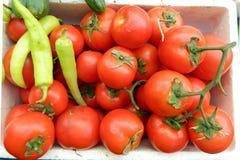 ντομάτες πιπεριών στοκ εικόνα