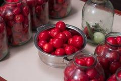 Ντομάτες που προετοιμάζονται για την κονσερβοποίηση των σπιτιών στα βάζα γυαλιού στοκ φωτογραφία