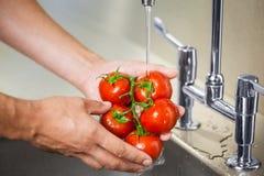 Ντομάτες πλύσης αχθοφόρων κουζινών κάτω από την τρέχοντας βρύση Στοκ εικόνα με δικαίωμα ελεύθερης χρήσης
